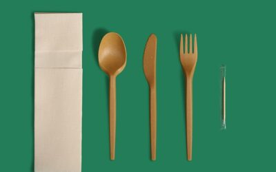 Eco-Friendly Cutlery in Natural Brown Shade